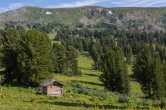 An old log cabin in a coniferous forest in Altai Krai mountains. An old log cabin in a coniferous forest in the Altai Krai mountains Stock Photo