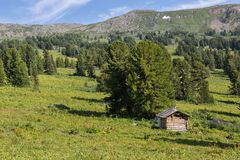 An old log cabin in a coniferous forest in Altai Krai mountains. An old log cabin in a coniferous forest in the Altai Krai mountains Royalty Free Stock Photo