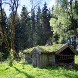 Old log cabin with grass roof in the woods royalty free stock photography