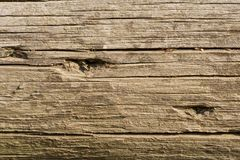 Free Old Log Closeup Royalty Free Stock Images - 3329579