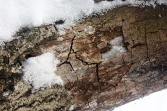 An old log covered in snow stock photos