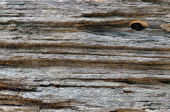 Old log cut off texture close-up Stock Image