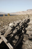 Old log Fence Royalty Free Stock Photo