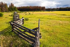 Old log fence in a field Royalty Free Stock Photos