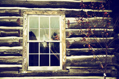 Old Log home wall with window - Nostalgic Royalty Free Stock Photography