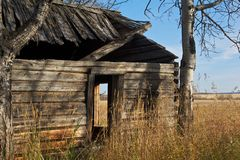 An old log house Royalty Free Stock Images