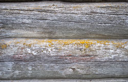 Old log's wall texture Royalty Free Stock Photography