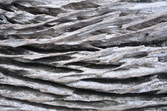 Old log surface Royalty Free Stock Images