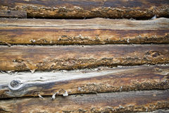 Old log wall background Stock Image
