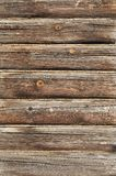 Old log wall background Royalty Free Stock Image
