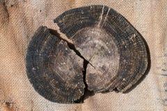 Old log wood on the burlap Royalty Free Stock Photo