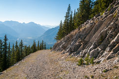 Old logging road near Banff. View of an old logging road on Sulphur Mountain in Banff National Park Stock Photos
