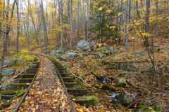 Old Logging Train Tracks On The Blue Ridge Parkway Stock Image