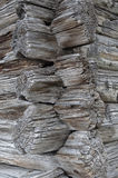 Old logs joint texture Royalty Free Stock Photo