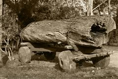 Old logs Stock Photography