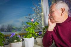 Old lonely man sitting near the window in his house. Old lonely man sitting near the window in his house with flowers Stock Photo