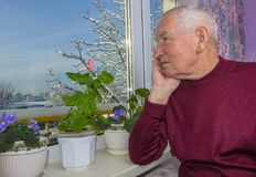 Old lonely man sitting near the window in his house. Old lonely man sitting near the window in his house with flowers Stock Image