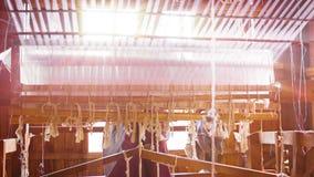 Old loom. Unusual perspective from below stock video footage