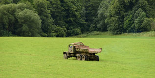 Old lorry on green meadow Stock Image