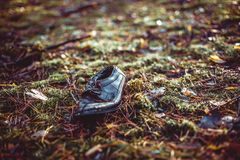 Old lost single shoe in the pine forest.  Stock Images