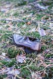 Old lost single shoe in the pine forest.  Royalty Free Stock Photo
