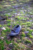 Old lost single shoe in the pine forest.  Stock Photography