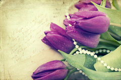 Old love letters and purple tulips Royalty Free Stock Images