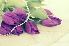 Old love letters and purple tulips Stock Photo