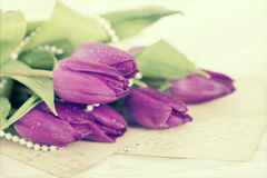 Old love letters and purple tulips Stock Photography