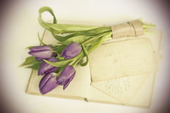 Old love letters and purple tulips Royalty Free Stock Photos