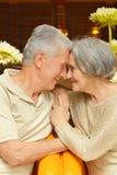 Old loving couple Stock Photo