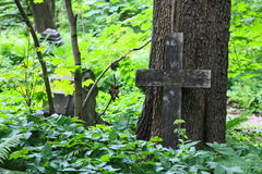 Old Lutheran cemetery in Saint Petersburg, Russia, Northern Europe. Royalty Free Stock Photos