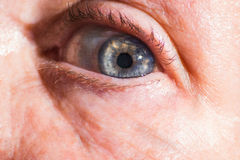 Old macro shot of old blue eye, old woman, lady, close up, grand Royalty Free Stock Images