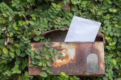 Old mailbox of house. Old mailbox and letter of house with climber background royalty free stock images