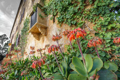Old Majorca traditional house with flowers. Wide angle view of vintaje Majorca traditional house with flowers Royalty Free Stock Image