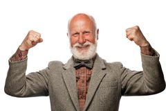 Old man with a big beard and a smile. On white background stock photos