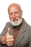 Old man with a big beard and a smile Royalty Free Stock Photography
