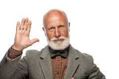 Old man with a big beard and a smile Royalty Free Stock Photos