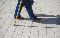 Old man with a cane. Natural. Man with a stick. royalty free stock image