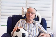 Old man with cat watching football match on tv. Excited old man sitting in armchair with his white cat, holding soccer ball and looking at football match on tv Stock Image