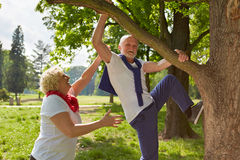 Old man climbing with woman on tree in a park Stock Photos