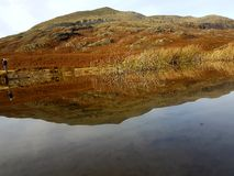 Old Man Conistance. Capture of the mountain mirrored by the water Stock Image