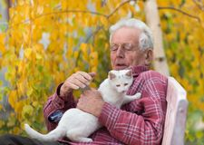 Old man cuddling cat in park. Senior man cuddling young white cat on bench in park with yellow tree in background in autumn Stock Photo