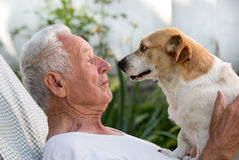 Old man and cute dog kissing. Old man resting in garden and cute dog climb on his chest and kissing him. Pet love concept stock photography