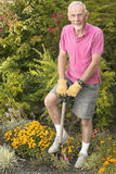 Old man digging in garden Stock Image