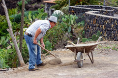 Old man is digging ground in his garden. Stock Image