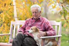 Old man with dog on bench in park. Senior man cuddling cute dog on bench in park with yellow tree in background in autumn. Pet love and care concept. Alternative stock image
