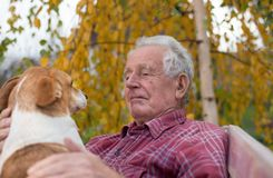 Old man with dog on bench in park. Senior man cuddling cute dog on bench in park with yellow tree in background in autumn. Pet love and care concept. Alternative royalty free stock images