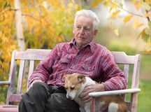 Old man with dog on bench in park. Senior man cuddling cute dog on bench in park with yellow tree in background in autumn. Pet love and care concept. Alternative royalty free stock photo