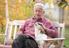 Old man with dog on bench in park. Senior man cuddling cute dog on bench in park with yellow tree in background in autumn. Pet love and care concept. Dog stock photo